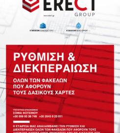 Erect Group